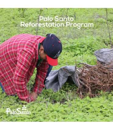 Pulsera Japa Mala 21 cuentas de Palosanto (1 unidad)