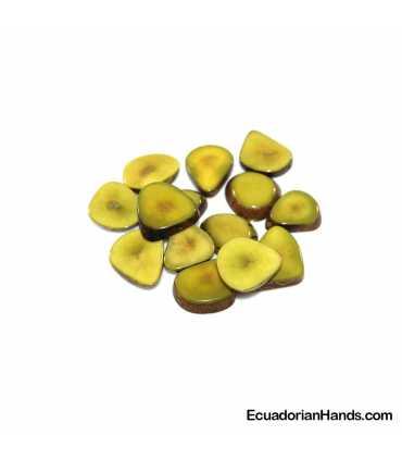 Slice Tagua Bead (20 units)