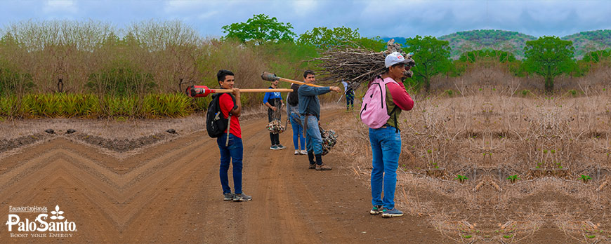 https://ecuadorianhands.com/en/blog/post/it-s-reforestation-time-palosanto.html