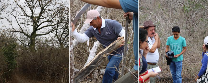 Reforestation Program Joa EcuadorianHands