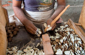 Ecuadorianhands-Tagua-manufacture-Cutting-1.jpg