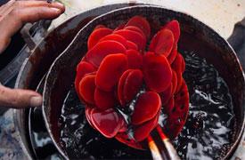 Ecuadorianhands-Tagua-manufacture-Dyeing.jpg