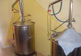 Palo Santo Aceite Esencial Bursera Graveolens, Usos y Beneficios