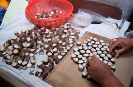 Ecuadorianhands-Tagua-manufacture-Nut-Selection.jpg