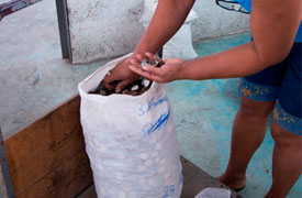 Ecuadorianhands-Tagua-manufacture-Quality-Control-1.jpg